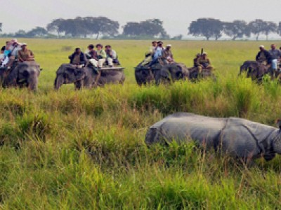 Valley Tour of Assam With Indian Holidays