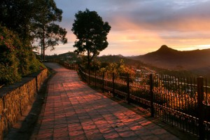 Picturesque Ooty & Kodaikanal Tour Package By Yatra