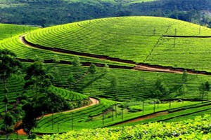 Explore South India Package With Via