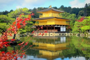 Japan Cherry Blossom Group Tour Package