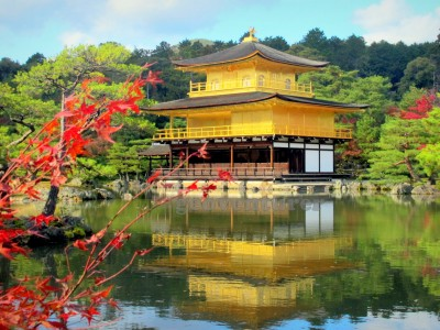Japan Cherrry Blossom Gorup Tour Package By Kesari