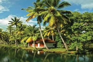 Blooming Kerala Tour Package By Goibibo