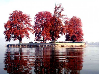 Kashmir Honeymoon Tour Package By Indian Holidays