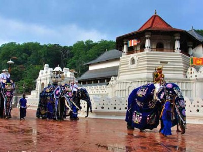 The Miraculous Sri Lanka Tour Package By Travel XP