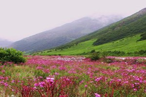 Sikkim – Land of Astounding Natural Scenery Package By Yatra