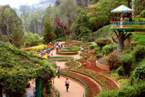 Ooty, Kodaikanal & Munnar Tour Package By Make My Trip
