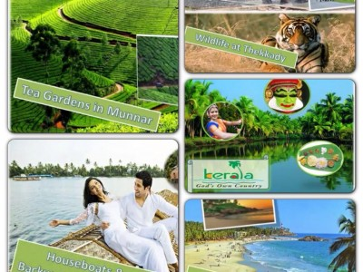 Varieties of Kerala Tour Package By Coconut Land Holidays