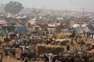 India Pushkar Fair in Rajasthan