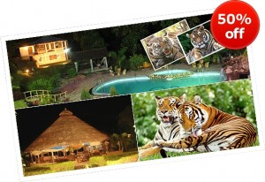 Corbett Jungle Club Resort, Jim Corbett.