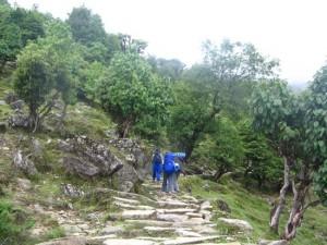 Pindar Glacier Trekking