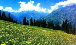 View of kASHMIR