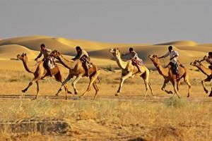 Jaisalmer Desert Festival Camel Race