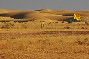 Jaisalmer Desert Landscape