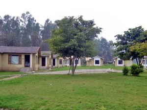 Parwati Wild Abode Resort