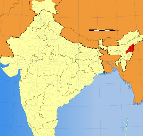 Location of Nagaland on Indian Map