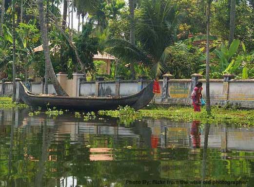 Kerala-backwater