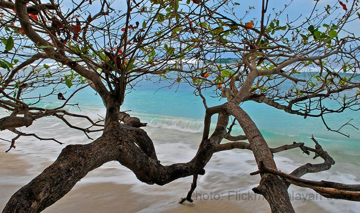 Radhanagar-beach,-Havelock-island