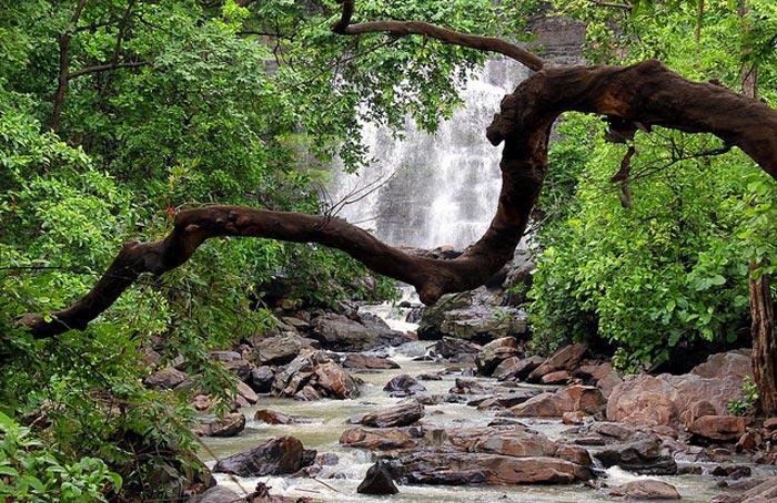 Dhaskund Rainy water fall Chhattisgarh