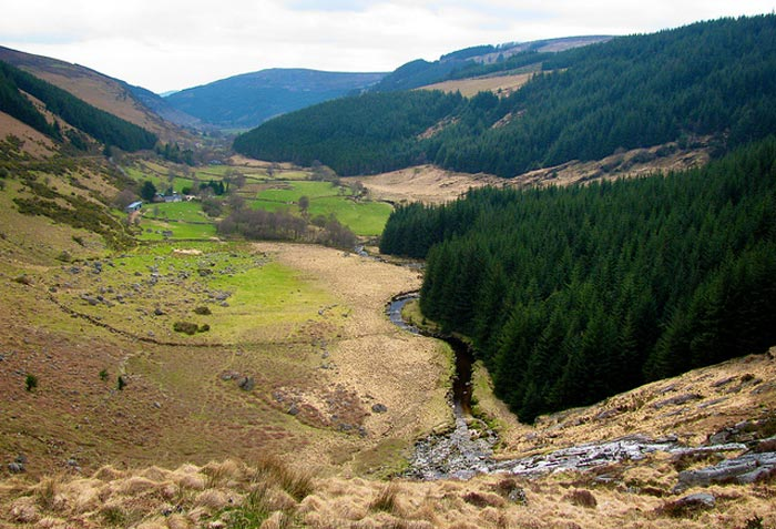 Ireland-Wicklow Mountains National Park