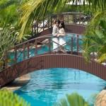 Kerala Budget Honeymoon Package from keralatravels