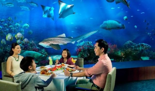 Amazing-Marine-Life-Park-in-Singapore-