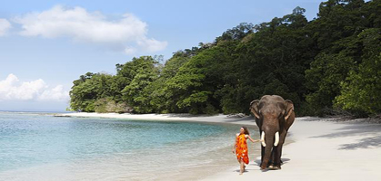 Elephant Beach, Havelock