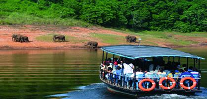 Periyar Lake Boat Cruise