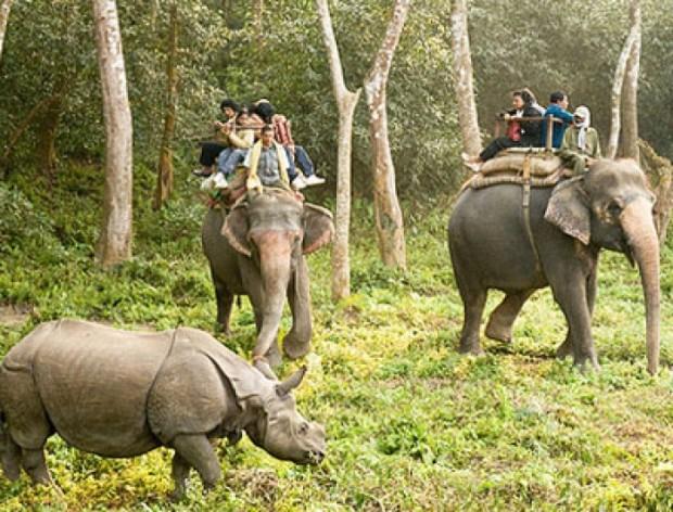 Binsar-Wildlife-Sanctuary1
