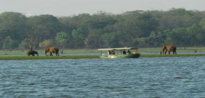 Kabini Boat Safari