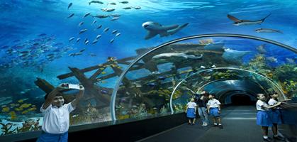 Marine Life Park Aquarium