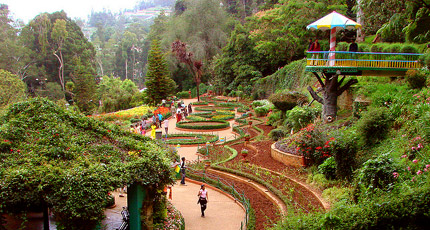 Beautiful South, Ooty, Kodaikanal & Munnar Tour Package By Make My Trip