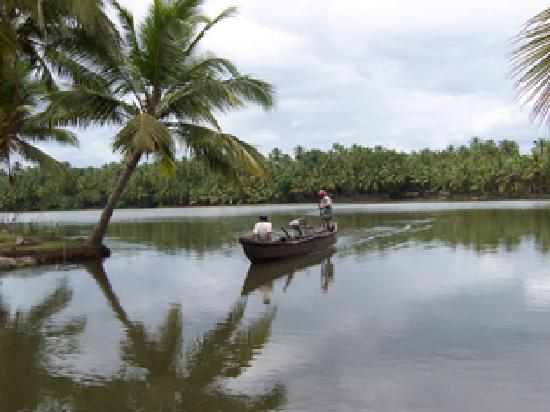Backwaters in Trichur