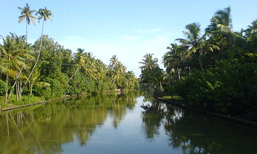 Beauty of Ashtamudi Lake