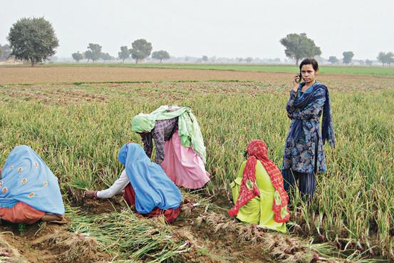 Behror Village Life