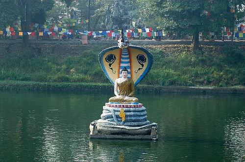 Buddha Statue Cobra