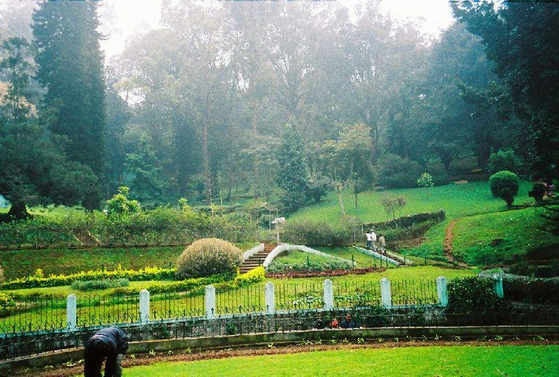 Coonoor Park