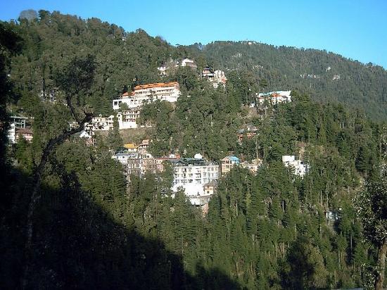 Dalhousie view