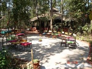 Kanha Jungle Lodge, Kanha