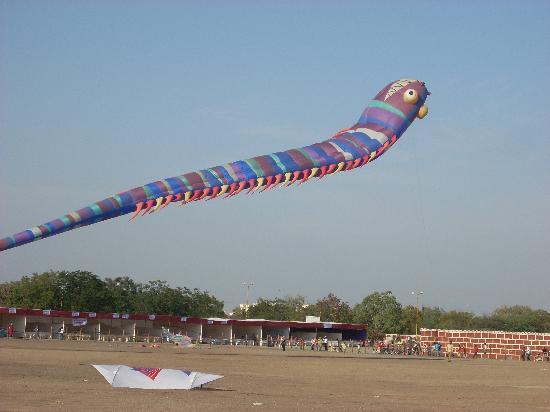 Kite festival at rajkot