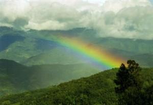 Nagaland View