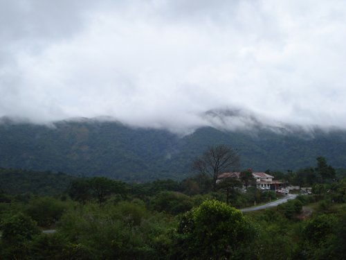 Nature at Coorg