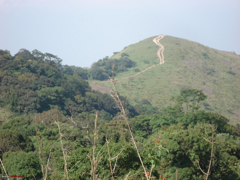 Nelliampathy, Queen of the Palakkad hills