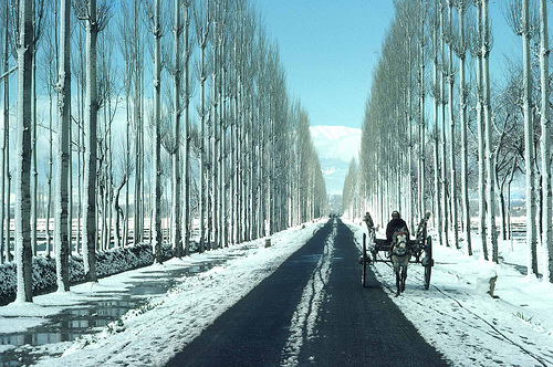 On way to gulmarg