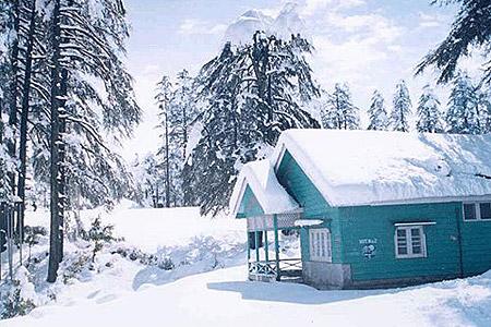 Patintop in winter
