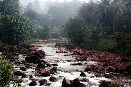 River in Ponmudi