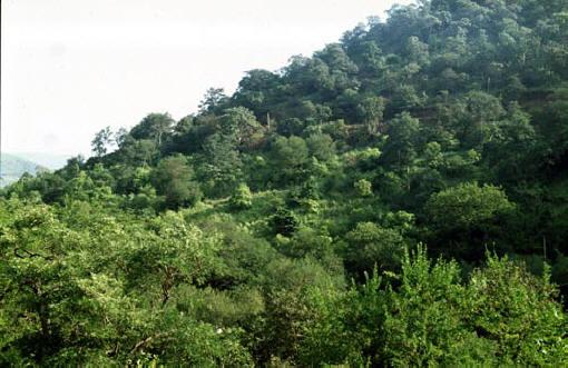 Sandur hills