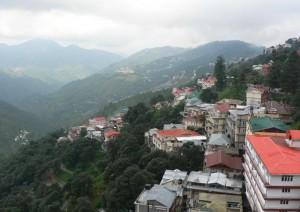 Shimla View