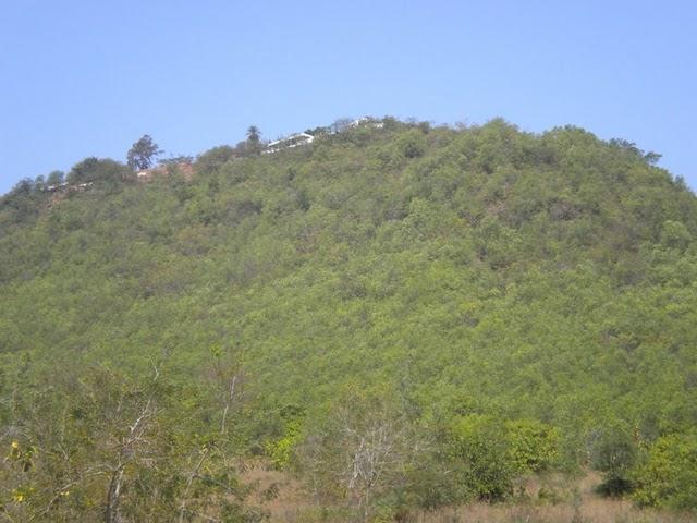 Taratarini Pitha Temple