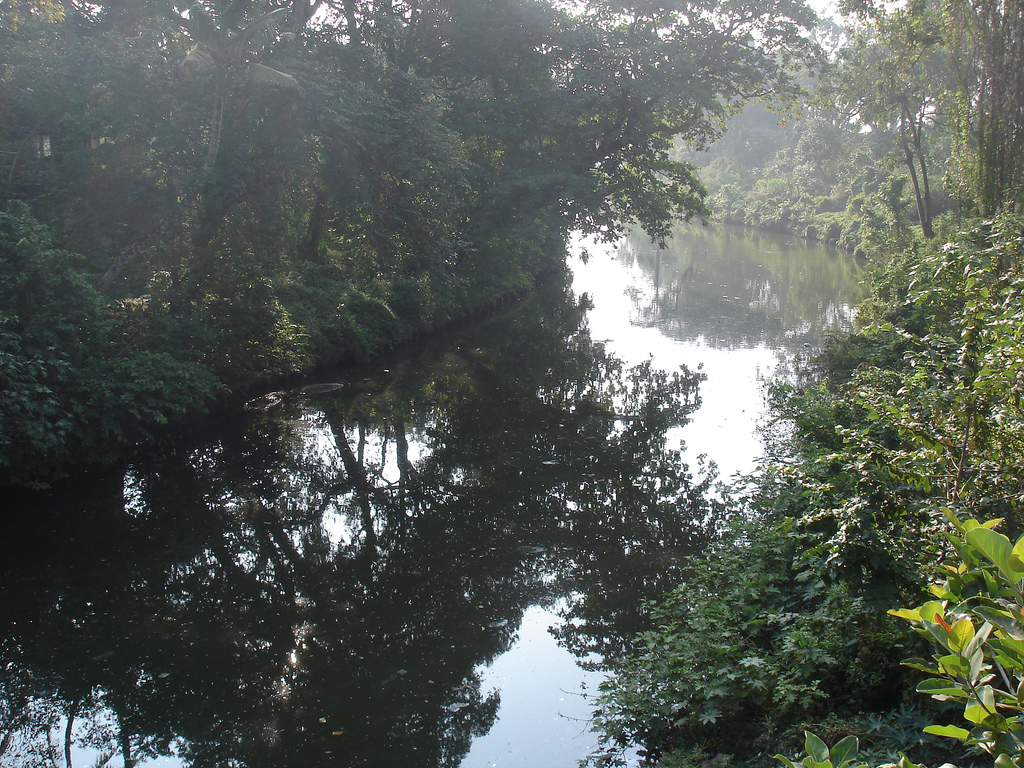 The Kollam TS Canal near to Kollam beach