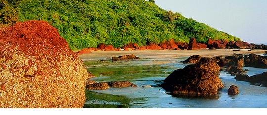 The Tourist Hot Spot Goa